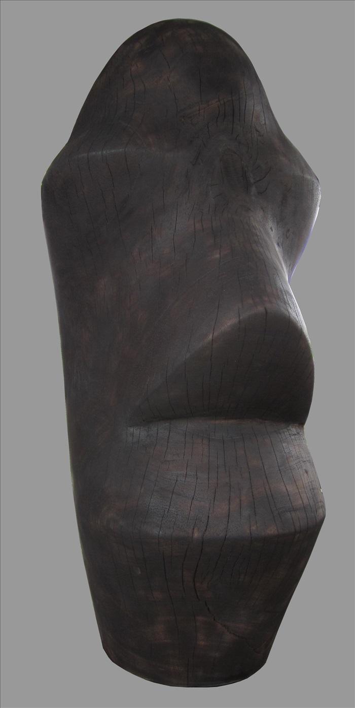 Thái Nhật Minh, NGƯỜI ĐÀN ÔNG BUỒN, 2011
